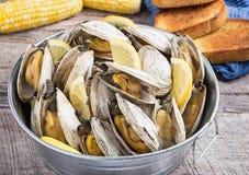 桶被蒸的蛤蜊 免版税库存图片