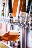 桶装啤酒 免版税图库摄影