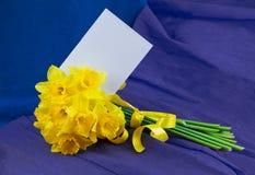 桶水仙开花,在青紫色背景的信封 图库摄影