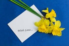 桶水仙花和在蓝色背景的一个信封 免版税库存照片