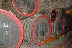 梅利尼克,捷克共和国 酒存贮的桶在葡萄酒酿造博物馆的地窖里  免版税库存图片