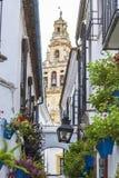 梅斯基塔和花卉街道的看法在科多巴 免版税图库摄影