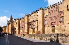 梅斯基塔科多巴,西班牙清真大寺  免版税库存照片