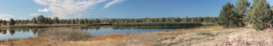 梅菲尔德池塘 库存照片