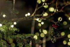 梅费尔在圣诞节晚上,伦敦 库存图片