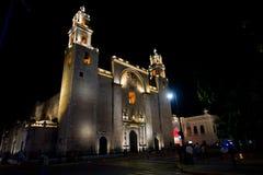 梅里达大教堂在晚上 免版税库存照片
