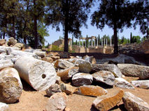 梅里达罗马废墟 免版税库存照片