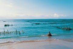 梦想海滩、海藻处于低潮中和男孩 免版税库存照片