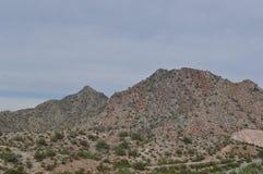梦想的凹道绿色沙漠 库存图片