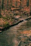 梦想的小河 库存图片