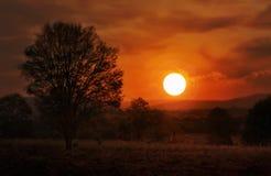 梦想的日落或微明在山和树型视图,风景d 免版税库存照片