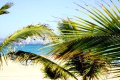 梦想的海滩 库存图片