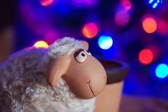 梦想的羊羔 免版税库存图片