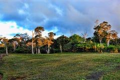 梦想的考艾岛,夏威夷 免版税库存图片