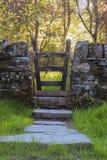 梦想的道路和门方式在森林地 库存照片