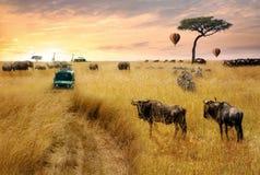 梦想的非洲野生生物徒步旅行队场面 库存图片