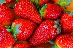 梦想草莓 免版税图库摄影