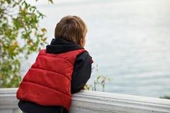 梦想调查与他的距离的男孩游人回到照相机 免版税图库摄影