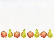 梨苹果秋天集合 库存照片