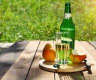 梨萍果汁和梨在夏天去野餐 免版税库存图片
