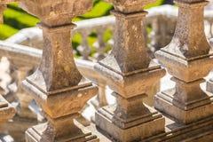 梯子在有修剪的花园的公园种植光滑的线 库存照片