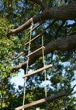 梯子绳索 免版税库存图片