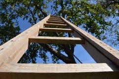 梯子 免版税图库摄影