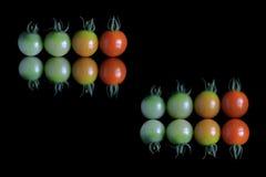 梯度在反射黑色的西红柿 库存图片