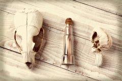 梳发现的减速火箭的海滩 免版税图库摄影