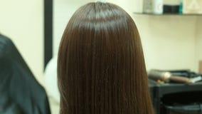 梳女性的头发的美发师 股票录像