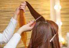 梳她他的美容院的客户的长,红色头发的美发师 免版税库存图片