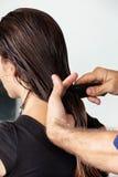 梳客户的湿头发的美发师 免版税库存照片