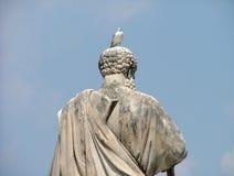梵蒂冈海鸥 库存照片