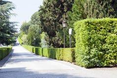 梵蒂冈9月20日:大道在梵蒂冈庭院里2010年9月20日的在梵蒂冈,罗马,意大利 库存图片