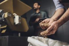 检查五谷的啤酒厂工作者 免版税库存照片