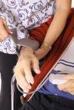 检查压的血液 图库摄影