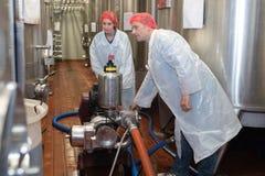 检查在工厂化学制品实验室的酒 库存照片