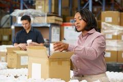 检查在生产线的经理货物 库存照片