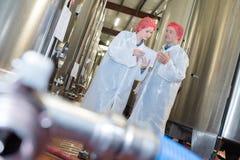 检查在酿酒厂的设备 免版税库存图片