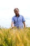 检查大豆领域的农夫 独特的技术生长 免版税库存图片