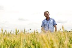 检查大豆领域的农夫 独特的技术生长 免版税库存照片