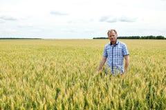 检查大豆领域的农夫 独特的技术生长 库存照片