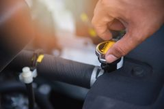 检查幅射器汽车用在引擎的手在汽车服务中心 库存照片