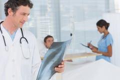 检查患者X-射线的医生 免版税库存照片