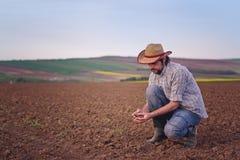 检查肥沃农业农场土地的土壤质量的农夫 库存图片