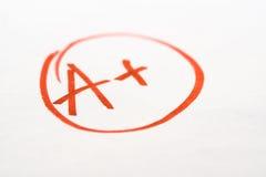 检查非常好的小学校 免版税图库摄影