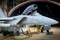 检查他的F15喷气式歼击机的技术员 免版税库存照片