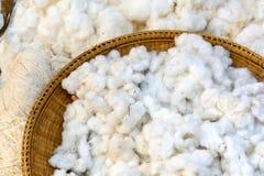 棉花为做棉花穿线做准备 免版税图库摄影