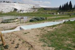 棉花堡的古老春天,土耳其 图库摄影