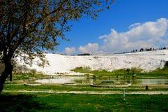 棉花堡的古老春天,土耳其 库存图片